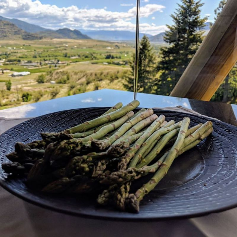 CANCELLED- Communal Table Dinner – Foraged @ Tinhorn Creek