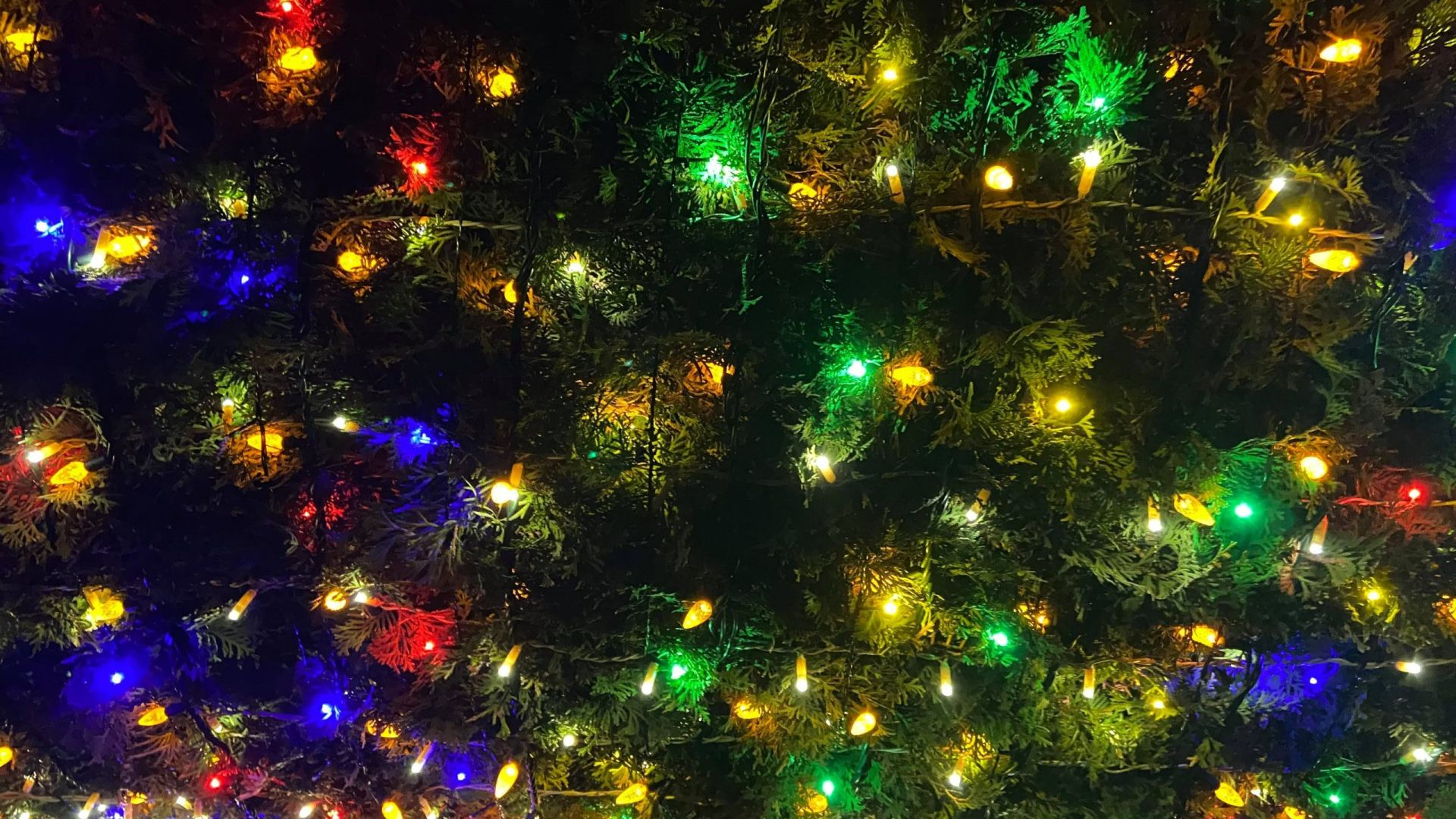 Holiday Lights in Osoyoos