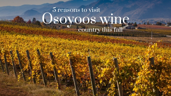 Osoyoos Wine Country