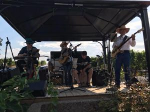 Band of four performing at Quinta Ferreira Winery